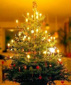 Đèn Trang Trí Cho Đêm Noel