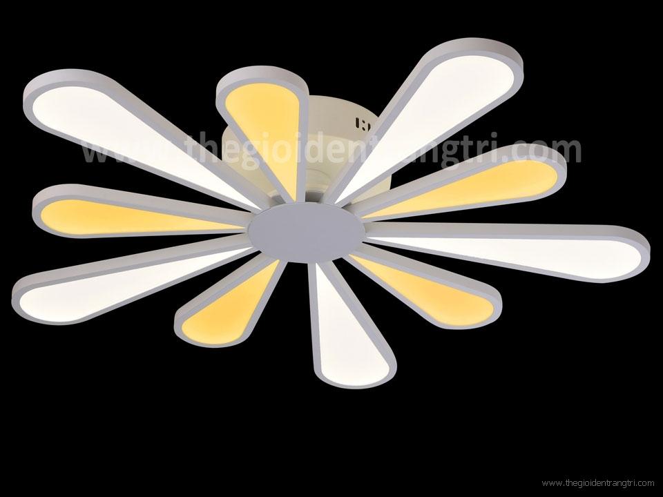Đèn Áp Trần Led Nghệ Thuật PN8867 Φ800