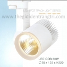 Đèn Pha Tiêu Điểm LED 30W EU-FR205