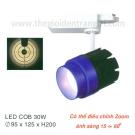 Đèn Pha Tiêu Điểm LED 30W EU-FR224