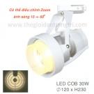 Đèn Pha Tiêu Điểm LED 30W EU-FR231