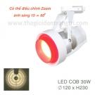Đèn Pha Tiêu Điểm LED 30W EU-FR235
