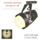 Đèn Pha Tiêu Điểm LED 30W EU-FR237