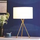 Đèn Trang Trí Để Bàn LH-DB504-21