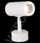 Đèn Pha Tiêu Điểm LED 10W NA-PT96A