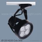 Đèn Pha Tiêu Điểm LED 35W SN6232