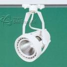 Đèn Pha Tiêu Điểm FR121 PAR30 18W