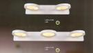 Đèn Soi Tranh LED AU-ST3972-3