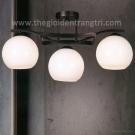 Đèn Trang Trí Thả Trần 79PT3-860