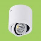 Đèn Lon LED 15W Gắn Nổi ULN03 Ø112