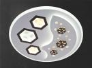 Đèn Áp Trần LED NLNC2313 Ø480