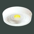 Đèn Áp Trần LED 10W UMPK Ø165