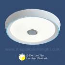 Đèn Trang Trí Ốp Trần LED SN1127 Ø500