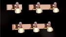 Đèn Soi Tranh LED NA-PT5694