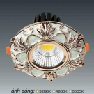 Đèn Downlight 12W AFC LED Puly 02 Ø70