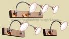 Đèn Soi Tranh LED ERA-SG3493