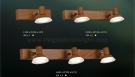 Đèn Soi Tranh LED USG793-1