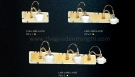 Đèn Soi Tranh LED USG5602-1