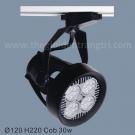 Đèn Pha Tiêu Điểm LED 30W LK@6232
