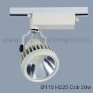 Đèn Pha Tiêu Điểm LED 30W LK@6240